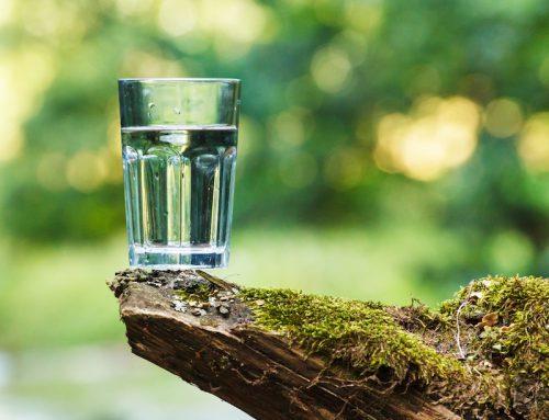 Wasser im täglichen Leben