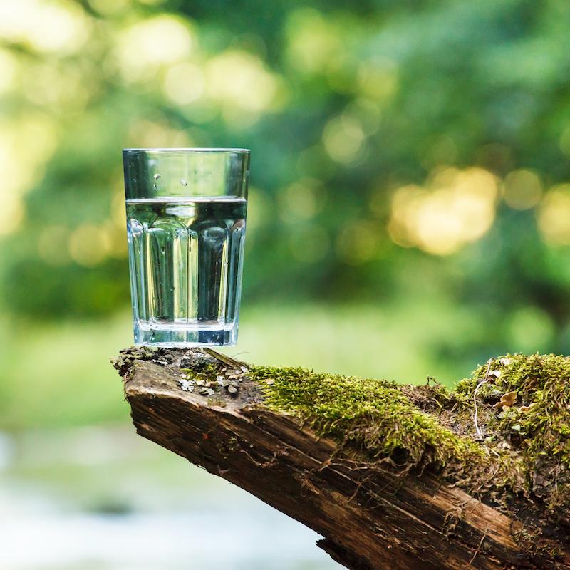 Ein Wasserglas steht auf einem bemoosten Holzstück.n
